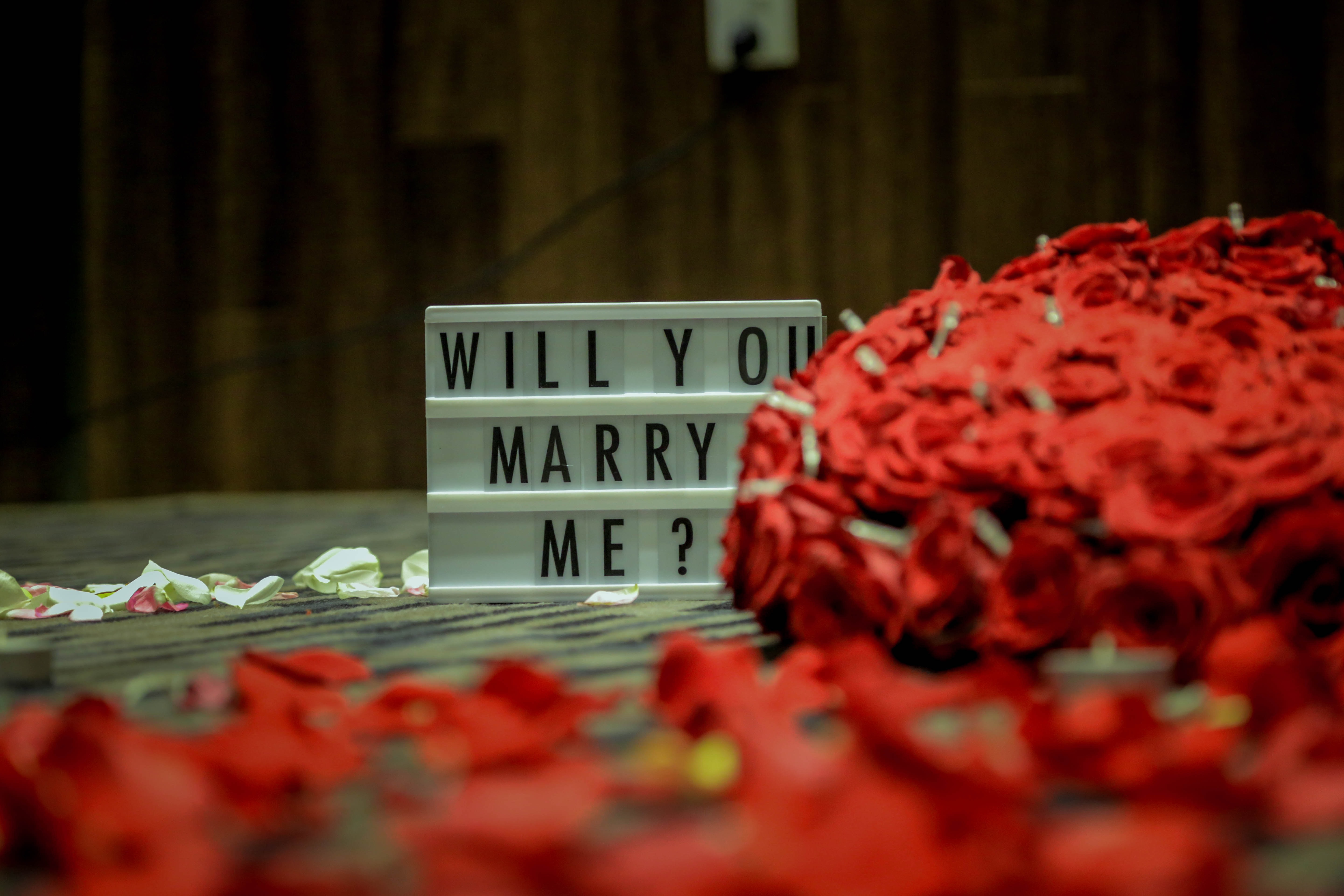 best places to propose in montreal